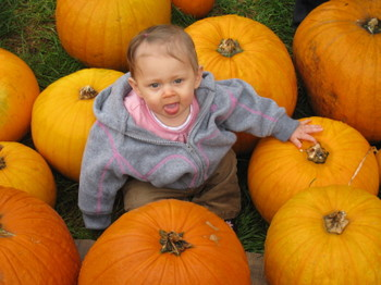 Pumkin_patch_018